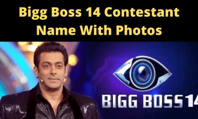 Bigg Boss 14 Contestant Name With Photos