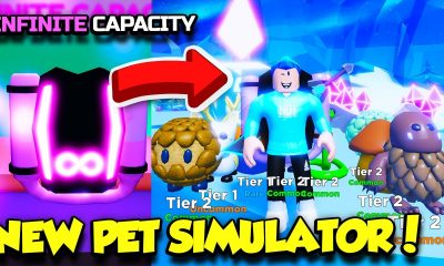 Pet Swarm Simulator codes